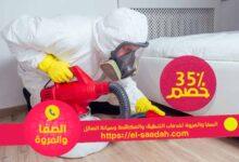 Photo of ارخص شركة مكافحة النمل الابيض بالرياض 0502131079 خصم 35%